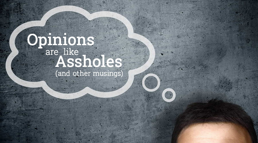 Opinions Are Like Assholes And Other Musings
